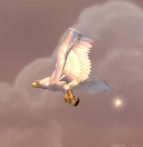 Great White Plainshawk