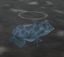 Steam Frog