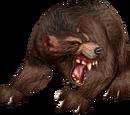 Hunter abilities/Pet abilities
