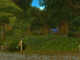 Elwynn Forest