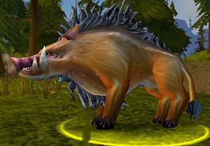 Elder Mountain Boar