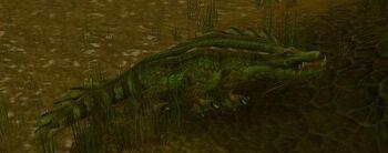 Sawtooth Crocolisk