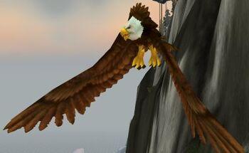 Fjord Hawk Matriarch