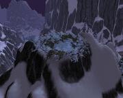 Broodmother's Nest