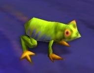 Image of Yellow-Bellied Bullfrog