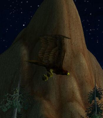 Kalimdor Eagle