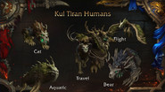 World of Warcraft Kul Tiras Human druid form - Blizzcon 2018