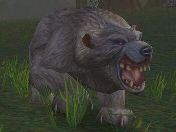 Vicious Gray Bear