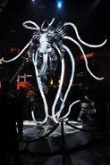BC 2014 Statues 9