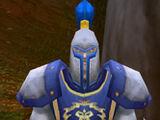 Guard Berton
