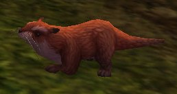 Image of Sifang Otter