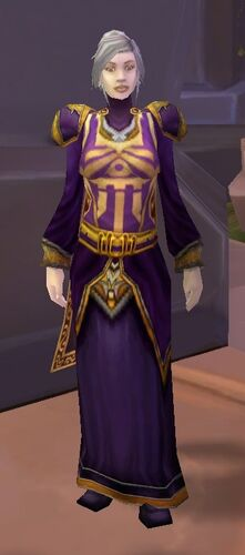 Friendly Dalaran Wizard