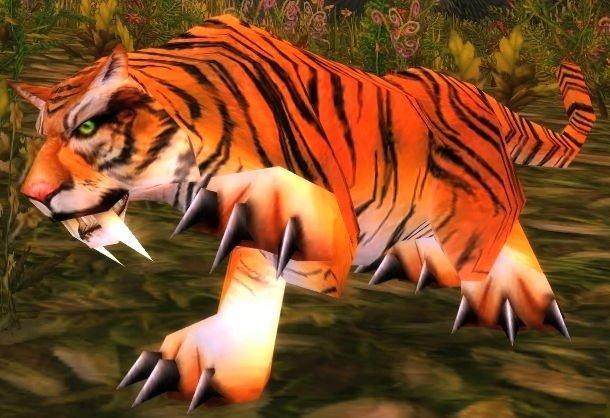 File:Young Stranglethorn Tiger.jpg