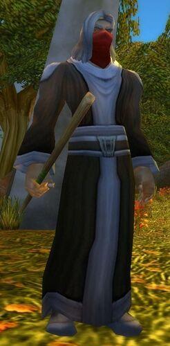Defias Rogue Wizard