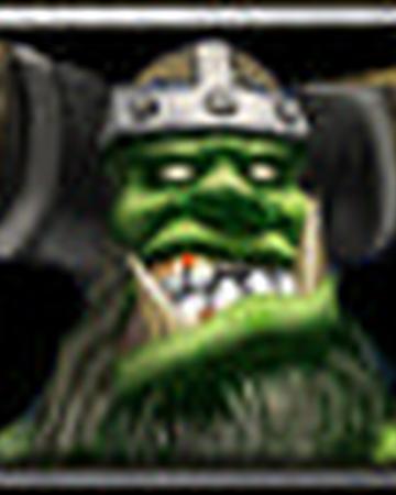 Raider Warcraft Iii Wowwiki Fandom
