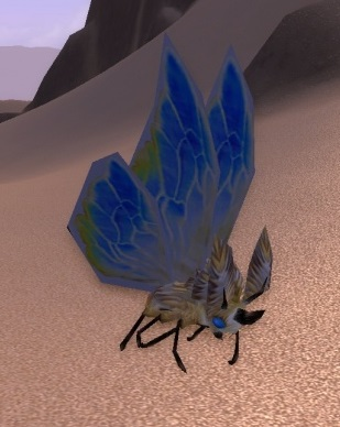 Image of Gilded Moth