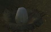 Hippogryph Egg