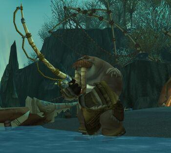 Moa'ki Fisherman