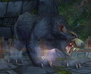 Amani Bear Spirit