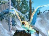 Stormpike Owl