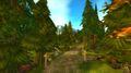 Western Darrowmere Forest.jpg