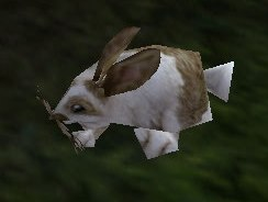 Image of Elfin Rabbit