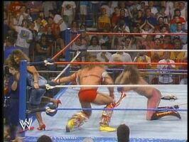 WWF Superstars 01