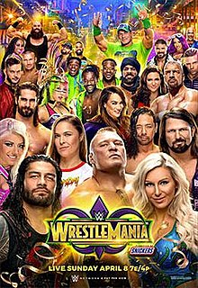 WWE WrestleMania 34 | Wrestlepedia Wiki | FANDOM powered by
