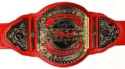 TNA Knockouts Tag Titles