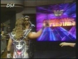 WWF Superstars 02
