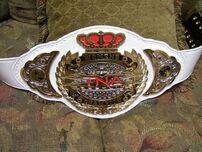 TNA Knockouts Title 1