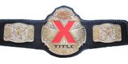 TNA X Division Championship 2002-2007