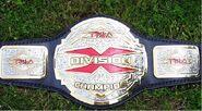 TNA X-Division Championship 2