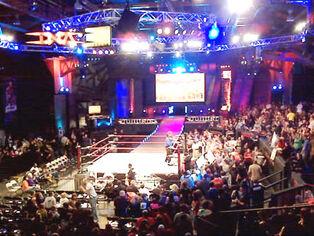 TNA 2010