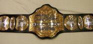 TNA World Heavyweight Championship 2012