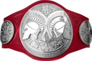 Raw Tag Team Championship 2017