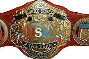 NWA-WCW US Tag Team Titles