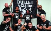 Bullet Club 2014 (3)