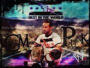CM Punk 9