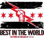 CM Punk 12