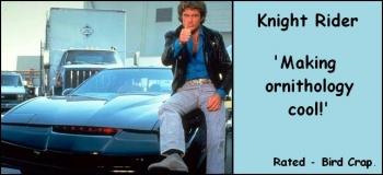Knight-rider-
