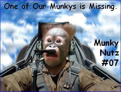 Munkynutz7