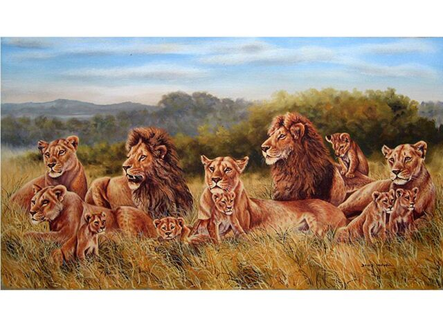 File:Lion Pride.jpg