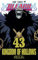 Bleach Volume 43