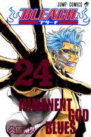 Bleach Volume 24