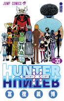 Hunter × Hunter Volume 30