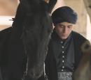 Koń księcia Mehmeda