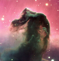 583px-The Horshead Nebula
