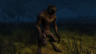 Creature Werewolf