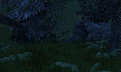 Twinkletoe Cave